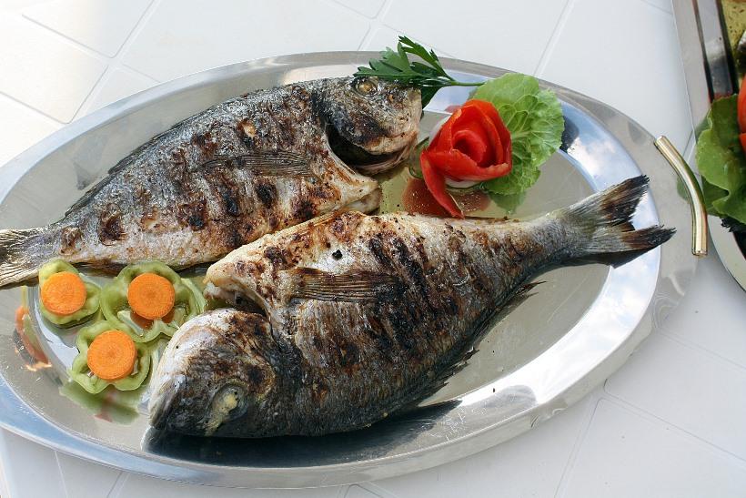 fish-2073798_1920