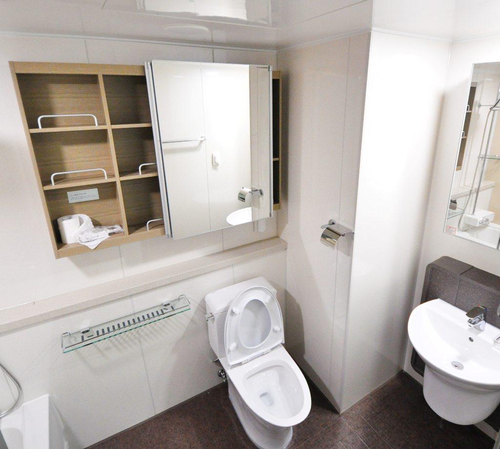 bathroom-interior-interior-design-restroom-262005